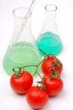 Alimento del GMO Fotografie Stock Libere da Diritti