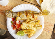 Alimento del Honduran Immagine Stock