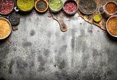 Alimento del legume Fotografia Stock