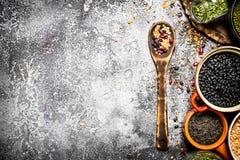 Alimento del legume Fotografie Stock