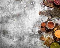 Alimento del legume Immagini Stock