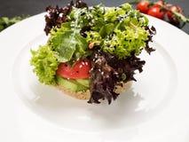 Alimento del ristorante del panino del vegano immagini stock libere da diritti