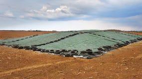 Alimento del silaggio su un campo Fotografia Stock Libera da Diritti