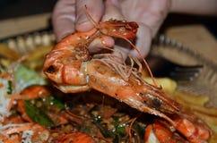 Alimento delicioso dos camarões em comer principal da mulher Foto de Stock Royalty Free