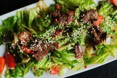 Alimento delicioso: retarde a carne puxada cozinhada com close-up da salada do legume fresco em uma placa Vista superior horizont fotografia de stock royalty free