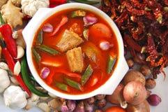 Alimento della Malesia Fotografia Stock