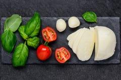 Alimento della mozzarella, del basilico e del pomodoro Fotografie Stock Libere da Diritti