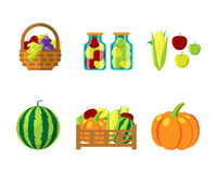 Alimento di autunno di Fharvest nell'illustrazione di vettore del canestro di vimini Fotografia Stock Libera da Diritti