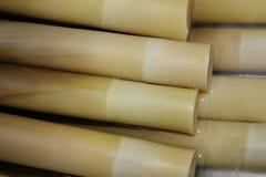 Alimento di bambù Fotografie Stock