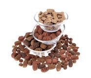 Alimento di cane Fotografie Stock Libere da Diritti