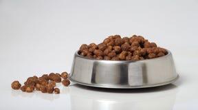 Alimento di cane della ciotola Fotografia Stock