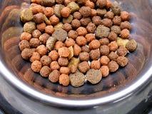 Alimento di cane su di piastra metallica Immagine Stock Libera da Diritti