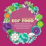 Alimento di Eco (verdure, famiglia del cavolo) + ENV 10 Fotografia Stock