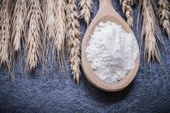 Alimento di legno delle orecchie del grano della farina del cucchiaio e concetto della bevanda Immagini Stock Libere da Diritti