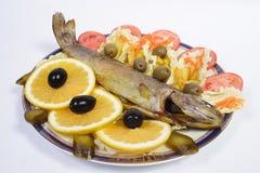 Alimento di pesci Fotografia Stock Libera da Diritti