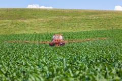 Alimento di spruzzatura del trattore del raccolto del mais Fotografie Stock