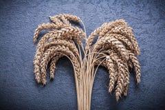 Alimento di vista superiore delle orecchie della segale e del grano e concetto della bevanda Fotografie Stock Libere da Diritti