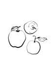 Alimento disegnato a mano di Eco della mela di schizzo Illustrazione di vettore frutta della pera, sui precedenti bianchi Fotografia Stock