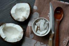 Alimento do coco Fotos de Stock Royalty Free