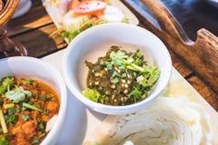 Alimento do norte tailandês Imagens de Stock Royalty Free