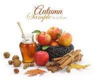 Alimento do outono Imagem de Stock Royalty Free