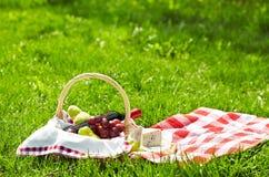 Alimento do piquenique Fotografia de Stock