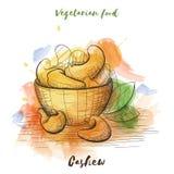 Alimento do vegetariano do esboço da aquarela do vetor Alimento de Eco Fotos de Stock Royalty Free