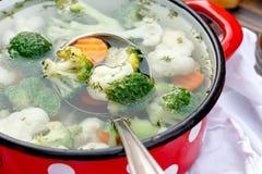 Alimento do vegetariano - sopa vegetal Foto de Stock