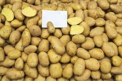 Alimento dos vegetais crus das batatas Imagem de Stock Royalty Free