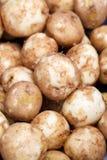 Alimento dos vegetais crus das batatas Fotografia de Stock