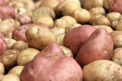 Alimento dos vegetais crus das batatas no despedida para a textura e o fundo do teste padrão Foto de Stock Royalty Free