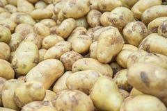 Alimento dos vegetais crus das batatas no mercado para a textura do teste padrão e o b Imagens de Stock