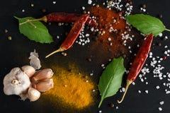 Alimento e concetto sano di stile di vita della bevanda Spezie del peperoncino rosso, nere fotografia stock libera da diritti