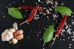 Alimento e concetto sano di stile di vita della bevanda Spezie del peperoncino rosso, nere immagini stock