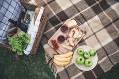 Alimento e copos de vinho saudáveis na grama para o piquenique romântico fotos de stock royalty free