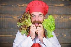 Alimento e vegetariano in buona salute Essendo a dieta con l'alimento biologico Prodotto-verdure fresche di vegetables vitamina a fotografia stock