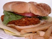 Alimento: Emparedado y fritadas de pollo frito foto de archivo