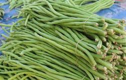 alimento fresco de vegetable Fotografia de Stock