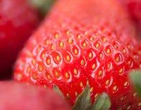 Alimento fresco natural sano de la fresa hermosa Imagenes de archivo