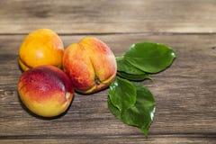 Alimento, frutta fresca, dessert dolce Vitamina fresca matura tre succosa Fotografia Stock Libera da Diritti