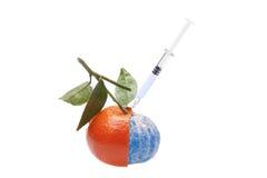Alimento geneticamente modificato Fotografia Stock Libera da Diritti