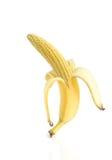Alimento geneticamente modificato dell'organismo Fotografia Stock Libera da Diritti