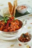 Alimento indiano del pasto fotografia stock