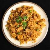 Alimento indiano do caril de Biriyani da galinha Fotos de Stock Royalty Free