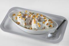 Alimento indiano sul Foto de Stock
