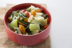 Alimento indonésio tradicional do lodeh de Sayur Imagens de Stock