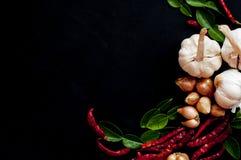 Alimento - ingredienti di cottura tailandesi Modello su fondo nero fotografie stock