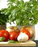 Alimento italiano imagem de stock royalty free