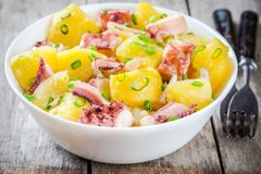 Alimento italiano: insalata con il polipo, le patate e le cipolle Immagini Stock