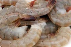 Alimento japonés - gambas sin procesar gastrónomas del tigre del rey del sushi fotos de archivo